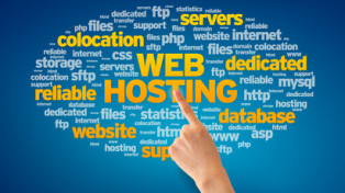 ABI Hosting has been providing shared and dedicated web hosting services since 1998. We continue to provide high speed, reliable hosting. Our data centers are equipped with state of the art hardware with Tier 1 connectivity. Everything has redundancy to prevent data loss and to maintain maximum up time. We now offer our custom security package to improve Google rankings and prevent user spam and malware insertion.